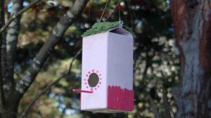 Как сделать скворечник для птиц из пакета от сока или молока