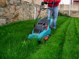 Стрижка газона весной, летом и осенью