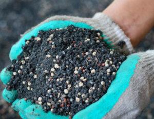 Дозы минеральных удобрений