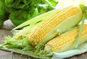 Как сажать кукурузу