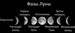 Как фазы лунного цикла влияют на растения?